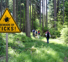 Tick Safety for this Hiking Season